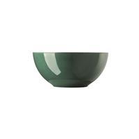 Thomas Sunny Day Herbal Green Schüssel 24 cm