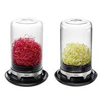Gefu Bivita Sprossenglas Borosilikatglas Miniatur Gewächshaus